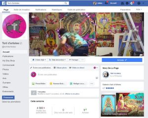 capture page facebook toril artistes