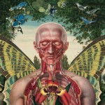 Juan Gatti collage 11 150x150 Fleurs dAnatomie