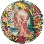 Juan Gatti collage 150x150 Fleurs dAnatomie