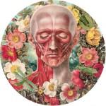Juan Gatti collage 2 150x150 Fleurs dAnatomie