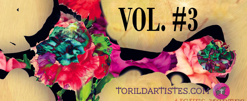 Compilation Toril Vol. #3